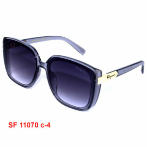 Женские Солнцезащитные очки Ferragamo SF 11070 C4